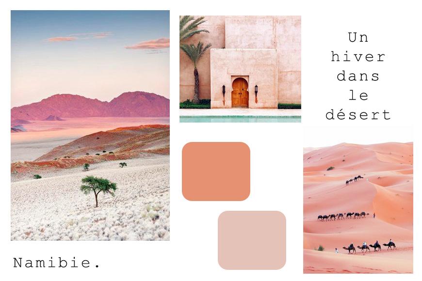 un hiver dans le désert